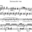 Р. Фальво — Скажите девушки / Rodolfo Falvo — Dicitencello vuie