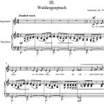 Р. Шуман — Liederkreis / Круг песен — III. Waldesgesprach