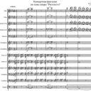 Л. Басси — Концертная фантазия на темы оперы «Риголетто» Дж.Верди