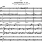 В.А. Моцарт — Ария «Vorrei spiegarvi, oh Dio» из оперы «Il curioso indiscreto»