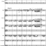 Д.Д. Шостакович — Соната для альта и оркестра. 2 часть